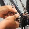 The Bike Shed -