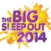 The Big Sleep Out 2014